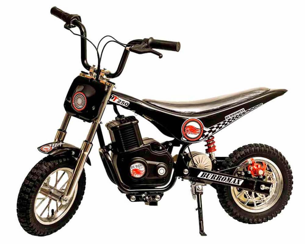 Burromax TT250